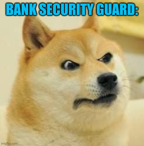 angry doge | BANK SECURITY GUARD: | image tagged in angry doge | made w/ Imgflip meme maker