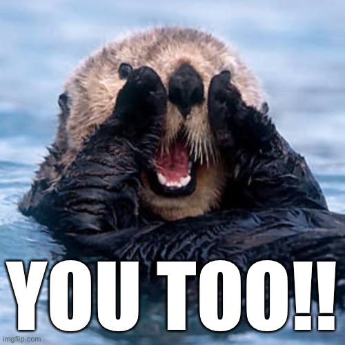 Shouting Otter | YOU TOO!! | image tagged in shouting otter | made w/ Imgflip meme maker