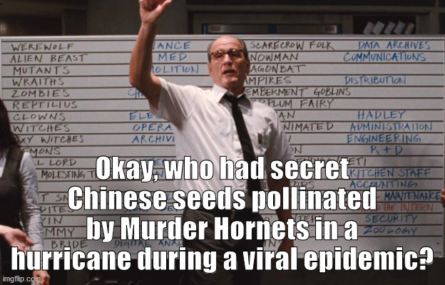 Okay, who had secret Chinese seeds pollinated by Murder Hornets in a hurricane during a viral epidemic? | image tagged in cabin the the woods | made w/ Imgflip meme maker