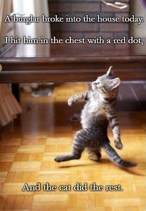 Cool Cat Stroll |  A burglar broke into the house today. I hit him in the chest with a red dot, And the cat did the rest. | image tagged in memes,cool cat stroll | made w/ Imgflip meme maker