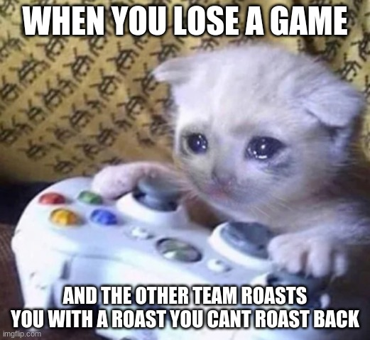 this cat do be sad tho |  WHEN YOU LOSE A GAME; AND THE OTHER TEAM ROASTS YOU WITH A ROAST YOU CANT ROAST BACK | image tagged in relatable,xbox one,video games | made w/ Imgflip meme maker