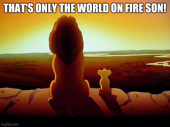 Lion King |  THAT'S ONLY THE WORLD ON FIRE SON! | image tagged in memes,lion king | made w/ Imgflip meme maker