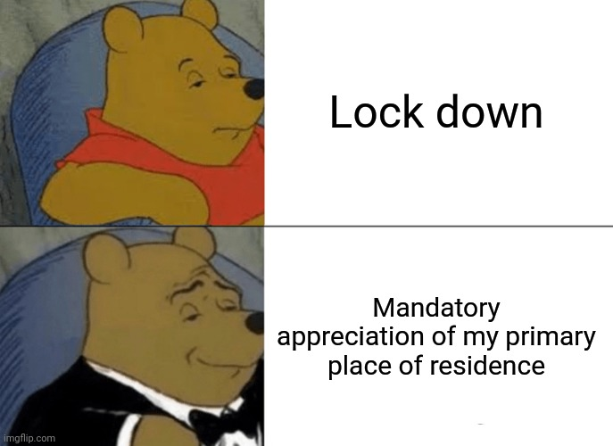 Tuxedo Winnie The Pooh Meme |  Lock down; Mandatory appreciation of my primary place of residence | image tagged in memes,tuxedo winnie the pooh | made w/ Imgflip meme maker
