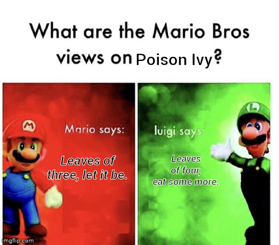 Views on nature |  Poison Ivy; Leaves of four, eat some more. Leaves of three, let it be. | image tagged in mario bros views | made w/ Imgflip meme maker