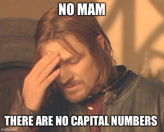 capital numbers |  NO MAM; THERE ARE NO CAPITAL NUMBERS | image tagged in memes,frustrated boromir,customer service,funny memes | made w/ Imgflip meme maker