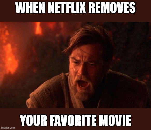 You Were The Chosen One (The Money Pit) |  WHEN NETFLIX REMOVES; YOUR FAVORITE MOVIE | image tagged in memes,you were the chosen one star wars | made w/ Imgflip meme maker