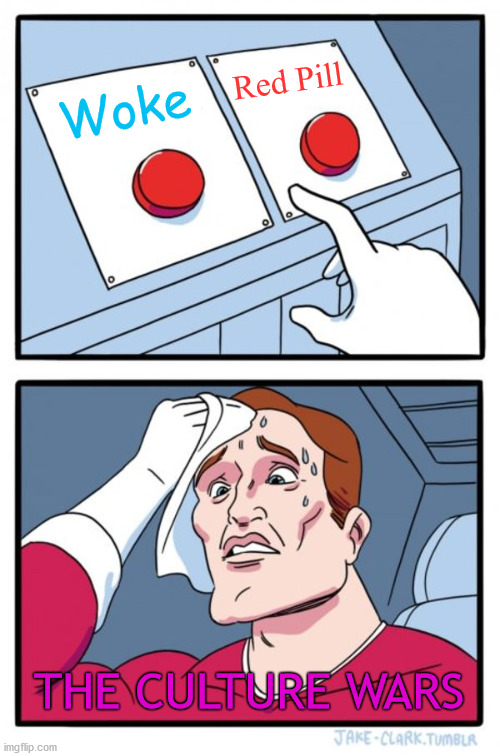 Choices Choices! |  Red Pill; Woke; THE CULTURE WARS | image tagged in two buttons,political memes,woke,red pill | made w/ Imgflip meme maker