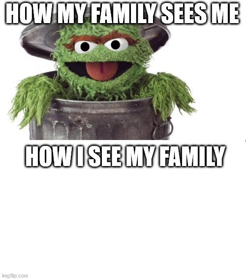 Oscar trashcan Sesame street | HOW MY FAMILY SEES ME HOW I SEE MY FAMILY | image tagged in oscar trashcan sesame street | made w/ Imgflip meme maker