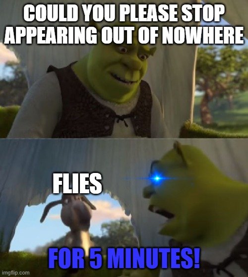 Could you not ___ for 5 MINUTES |  COULD YOU PLEASE STOP APPEARING OUT OF NOWHERE; FLIES; FOR 5 MINUTES! | image tagged in could you not ___ for 5 minutes,flies,annoying,shrek,donkey | made w/ Imgflip meme maker