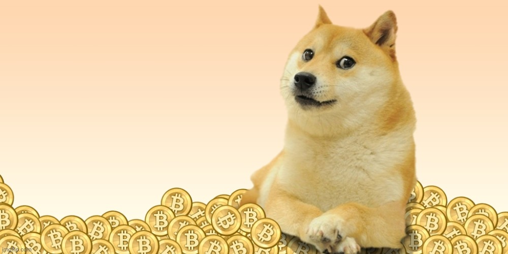 Doge Coin | image tagged in doge coin | made w/ Imgflip meme maker