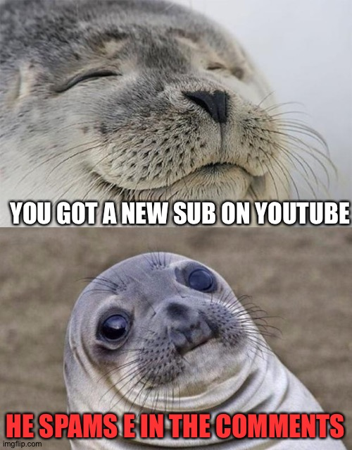 YouTube bots be like |  YOU GOT A NEW SUB ON YOUTUBE; HE SPAMS E IN THE COMMENTS | image tagged in memes,short satisfaction vs truth,youtube,bots | made w/ Imgflip meme maker