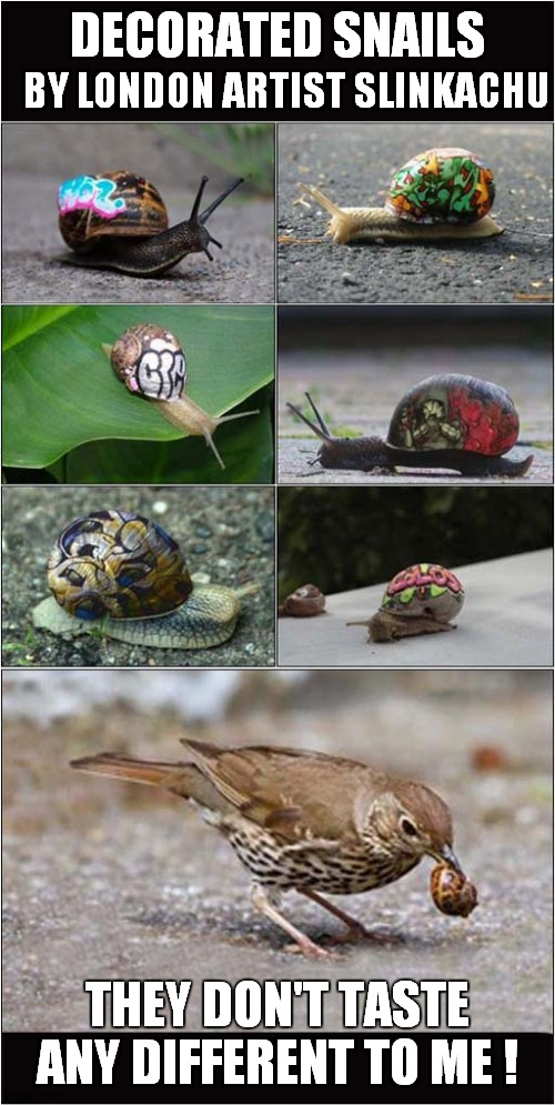 Pretty Tasty Painted Snails |  DECORATED SNAILS; BY LONDON ARTIST SLINKACHU; THEY DON'T TASTE ANY DIFFERENT TO ME ! | image tagged in fun,snail,birds | made w/ Imgflip meme maker