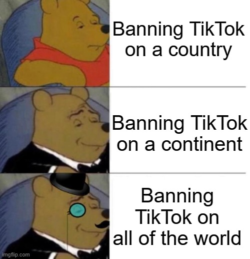 Tuxedo winnie the pooh |  Banning TikTok on a country; Banning TikTok on a continent; Banning TikTok on all of the world | image tagged in tuxedo winnie the pooh 3 panel,tiktok | made w/ Imgflip meme maker