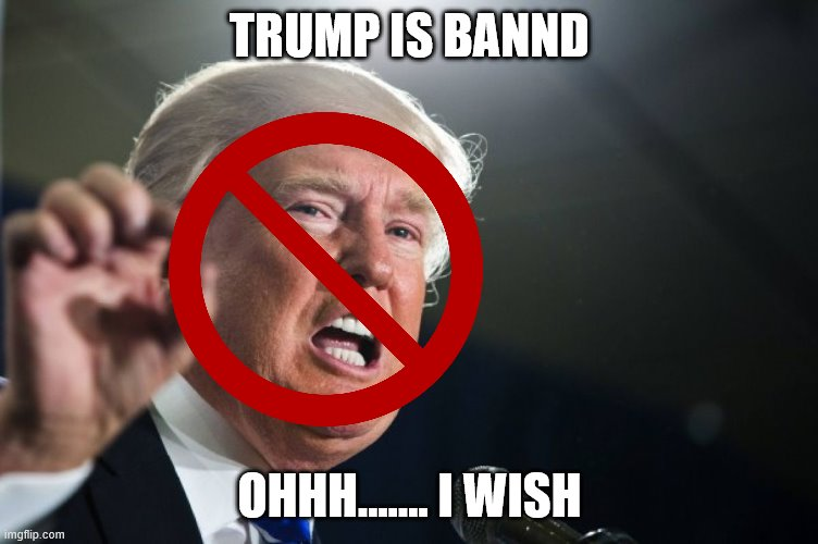 patrick |  TRUMP IS BANND; OHHH....... I WISH | image tagged in donald trump | made w/ Imgflip meme maker