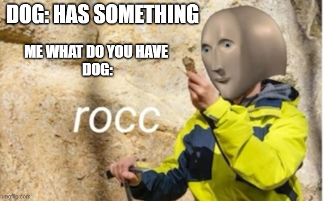rocc |  DOG: HAS SOMETHING; ME WHAT DO YOU HAVE  DOG: | image tagged in rocc | made w/ Imgflip meme maker