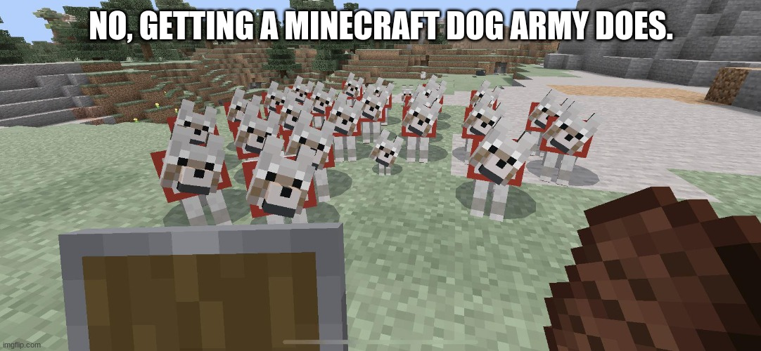 NO, GETTING A MINECRAFT DOG ARMY DOES. | made w/ Imgflip meme maker