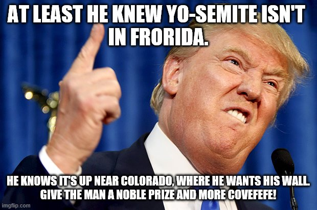 Trump Yo-Semite Frorida |  AT LEAST HE KNEW YO-SEMITE ISN'T  IN FRORIDA. HE KNOWS IT'S UP NEAR COLORADO, WHERE HE WANTS HIS WALL. GIVE THE MAN A NOBLE PRIZE AND MORE COVEFEFE! | image tagged in donald trump | made w/ Imgflip meme maker