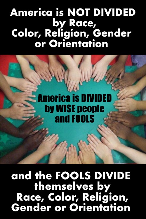 Pretty simple |  America is NOT DIVIDED  by Race, Color, Religion, Gender  or Orientation; America is DIVIDED  by WISE people  and FOOLS; and the FOOLS DIVIDE  themselves by Race, Color, Religion, Gender or Orientation | image tagged in diversity | made w/ Imgflip meme maker