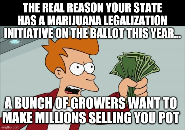 Can we please stop pretending pot growers are freedom fighters? The just want to make a ton of money selling you something! |  THE REAL REASON YOUR STATE HAS A MARIJUANA LEGALIZATION INITIATIVE ON THE BALLOT THIS YEAR... A BUNCH OF GROWERS WANT TO MAKE MILLIONS SELLING YOU POT | image tagged in greed,shut up and take my money fry,grow | made w/ Imgflip meme maker