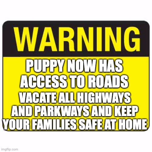 Heeheeheee |  PUPPY NOW HAS ACCESS TO ROADS; VACATE ALL HIGHWAYS AND PARKWAYS AND KEEP YOUR FAMILIES SAFE AT HOME | image tagged in warningsign,not license,permit,i got my permit today,watch out world,im coming for you | made w/ Imgflip meme maker