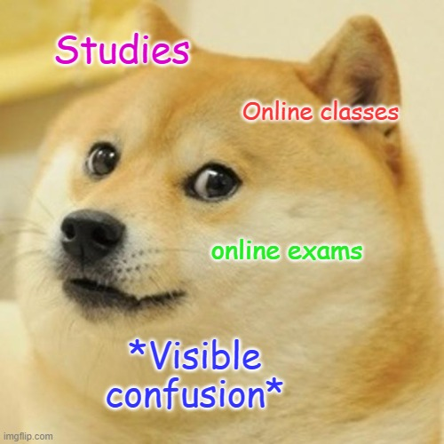 Doge Meme |  Studies; Online classes; online exams; *Visible confusion* | image tagged in memes,doge | made w/ Imgflip meme maker