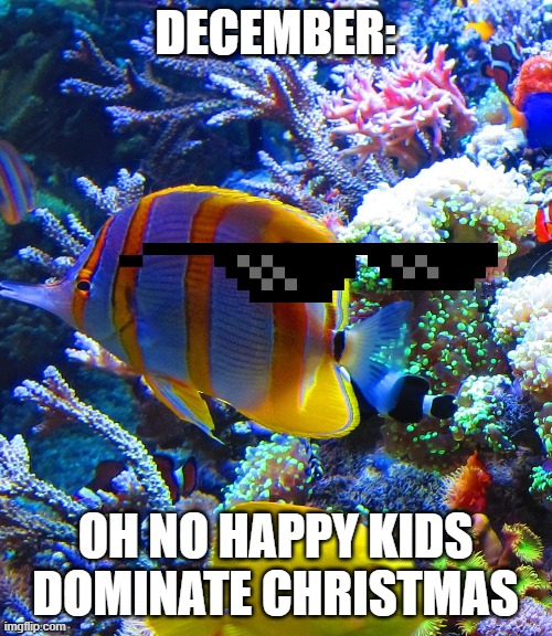 DECEMBER: OH NO HAPPY KIDS DOMINATE CHRISTMAS | image tagged in hey fishy | made w/ Imgflip meme maker