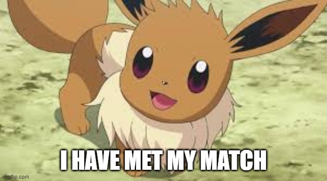 I HAVE MET MY MATCH | image tagged in eevee | made w/ Imgflip meme maker