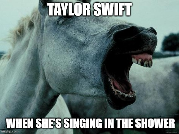 Taylor Swift |  TAYLOR SWIFT; WHEN SHE'S SINGING IN THE SHOWER | image tagged in taylor swift | made w/ Imgflip meme maker