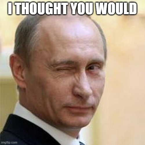 Putin Winking | I THOUGHT YOU WOULD | image tagged in putin winking | made w/ Imgflip meme maker