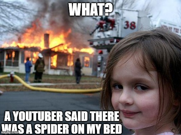 Disaster Girl |  WHAT? A YOUTUBER SAID THERE WAS A SPIDER ON MY BED | image tagged in memes,disaster girl | made w/ Imgflip meme maker