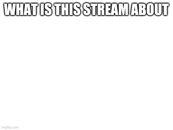 blank white template |  WHAT IS THIS STREAM ABOUT | image tagged in blank white template | made w/ Imgflip meme maker
