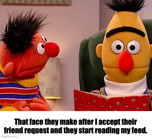 Disturbed Bert |  That face they make after I accept their friend request and they start reading my feed. | image tagged in bert and ernie | made w/ Imgflip meme maker