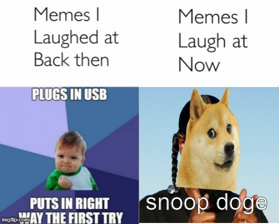 Memes I laughed at then vs memes I laugh at now |  snoop doge | image tagged in memes i laughed at then vs memes i laugh at now | made w/ Imgflip meme maker