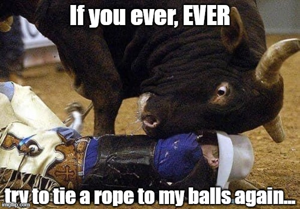 Let's rodeo!  Wait...  Who rides who again? |  If you ever, EVER; try to tie a rope to my balls again... | image tagged in funny,rodeo,cowboy,bull,uncomfortable,bulls | made w/ Imgflip meme maker