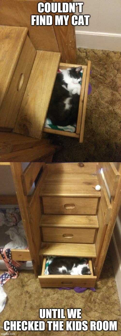 HE LIKES THE BUNK BED DRAWERS |  COULDN'T FIND MY CAT; UNTIL WE CHECKED THE KIDS ROOM | image tagged in cats,funny cats,sleeping cat | made w/ Imgflip meme maker
