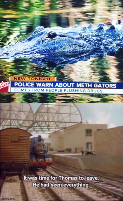 If they weren't scary enough already... | image tagged in it was time for thomas to leave,oh no,alligator,2020,we're all doomed | made w/ Imgflip meme maker