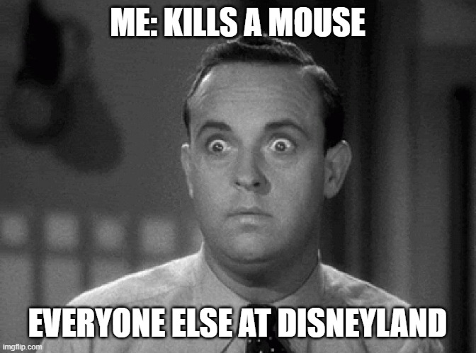 shocked face |  ME: KILLS A MOUSE; EVERYONE ELSE AT DISNEYLAND | image tagged in shocked face | made w/ Imgflip meme maker