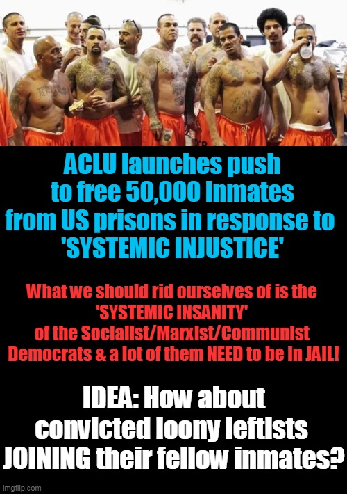 Leave Inmates In Jail & Add In Criminal Democrats After Trial & Conviction... |  ACLU launches push to free 50,000 inmates from US prisons in response to  'SYSTEMIC INJUSTICE'; What we should rid ourselves of is the  'SYSTEMIC INSANITY'  of the Socialist/Marxist/Communist   Democrats & a lot of them NEED to be in JAIL! IDEA: How about convicted loony leftists  JOINING their fellow inmates? | image tagged in politics,political meme,democratic socialism,crime,criminals,liberalism | made w/ Imgflip meme maker