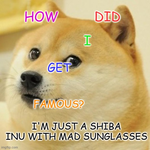 famous doge |  DID; HOW; I; GET; FAMOUS? I'M JUST A SHIBA INU WITH MAD SUNGLASSES | image tagged in memes,doge | made w/ Imgflip meme maker
