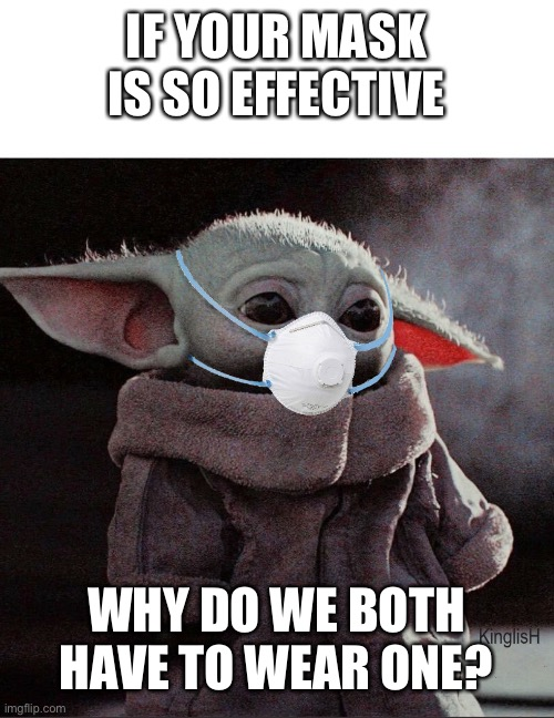 Coronavirus Baby Yoda |  IF YOUR MASK IS SO EFFECTIVE; WHY DO WE BOTH HAVE TO WEAR ONE? | image tagged in coronavirus baby yoda | made w/ Imgflip meme maker