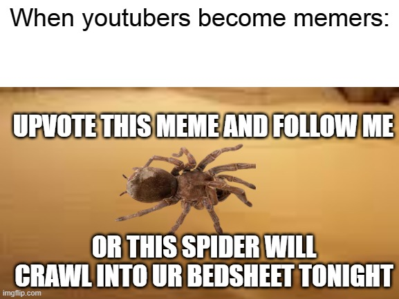 When youtubers become memers... |  When youtubers become memers:; UPVOTE THIS MEME AND FOLLOW ME; OR THIS SPIDER WILL CRAWL INTO UR BEDSHEET TONIGHT | image tagged in youtube,youtuber,youtubers,memes,imgflip | made w/ Imgflip meme maker
