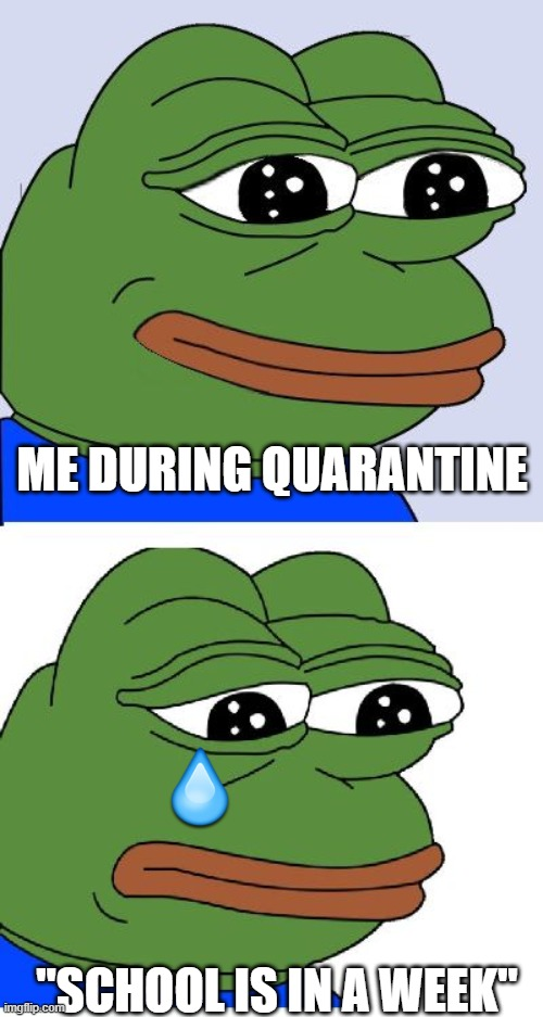 "dose anybody feel the same way besides me |  ME DURING QUARANTINE; ""SCHOOL IS IN A WEEK"" 