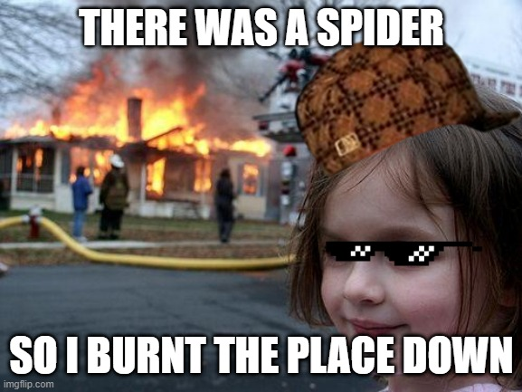 Disaster Girl |  THERE WAS A SPIDER; SO I BURNT THE PLACE DOWN | image tagged in memes,disaster girl | made w/ Imgflip meme maker