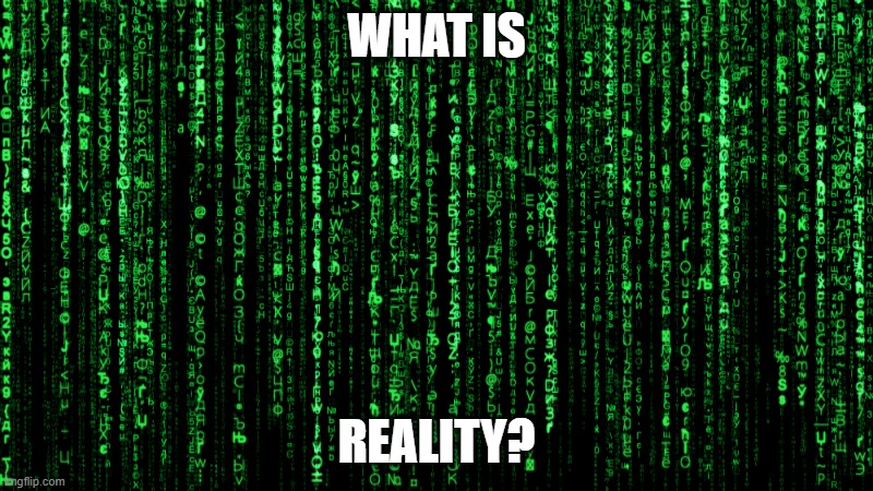 "Is it what you make? Is it all a simulation? What is the definition of something ""real""? 