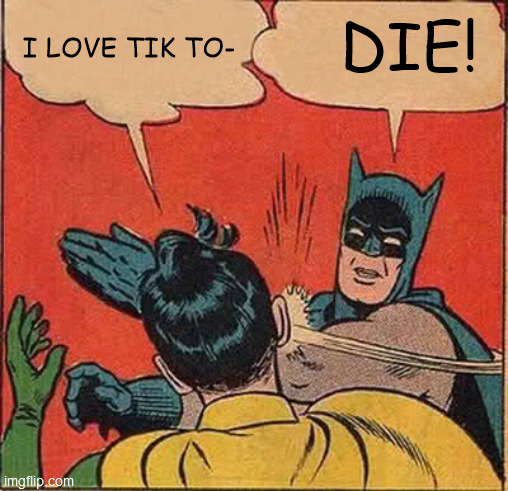 WHAT THE FRICCCCCCCCKITTTTTTYYYYYY HECCCIN HEEEEECCCCCCCCCC IS THISSSSSSS DOOOINNNNNNGGGGG  HERRRRRREEEEEEE?!?!?!?!?!??! |  I LOVE TIK TO-; DIE! | image tagged in memes,batman slapping robin | made w/ Imgflip meme maker