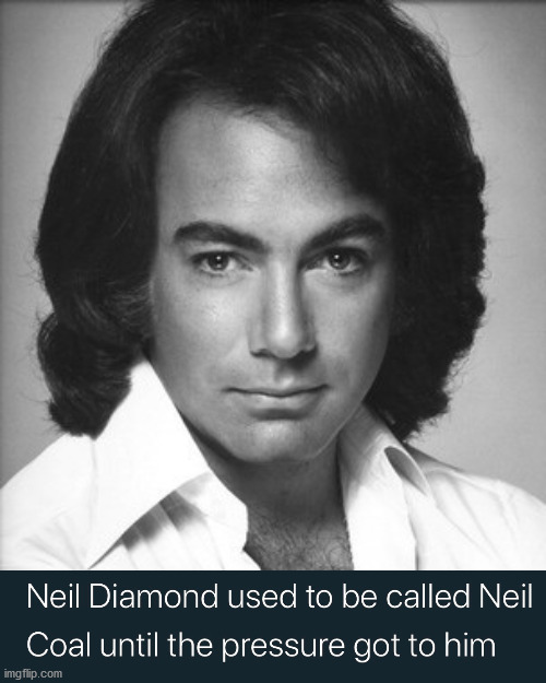 Sweet Caroline, that is really bad. | image tagged in neil diamond approves,dad joke,bad joke,funny names | made w/ Imgflip meme maker