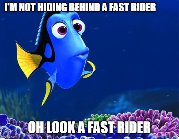 I'm not hiding behind a fast rider |  I'M NOT HIDING BEHIND A FAST RIDER; OH LOOK A FAST RIDER | image tagged in dory,cycling | made w/ Imgflip meme maker