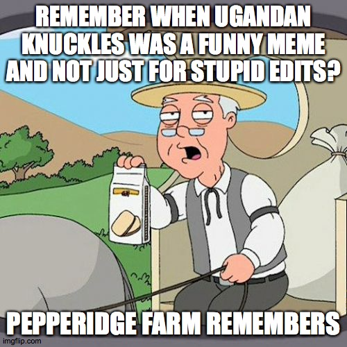 yep |  REMEMBER WHEN UGANDAN KNUCKLES WAS A FUNNY MEME AND NOT JUST FOR STUPID EDITS? PEPPERIDGE FARM REMEMBERS | image tagged in memes,pepperidge farm remembers | made w/ Imgflip meme maker