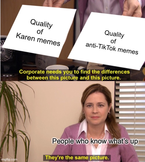 Fact |  Quality of Karen memes; Quality of anti-TikTok memes; People who know what's up | image tagged in memes,they're the same picture,karen,tiktok,funny,sad but true | made w/ Imgflip meme maker