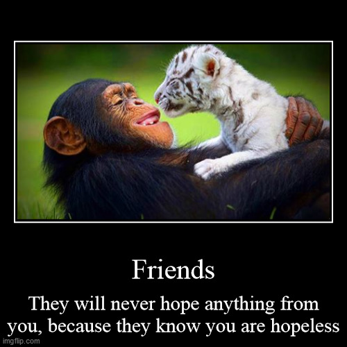 Value your friends | Friends | They will never hope anything from you, because they know you are hopeless | image tagged in funny,demotivationals,friends,friendship,best friends,best friend | made w/ Imgflip demotivational maker